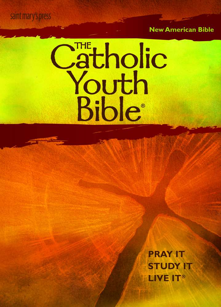 Catholic Youth Bible NABRE youth bible, personal bible, youth prayer book, youth gift, boy gift, girl gift, confirmation gift, sacramental gift, prayers, scripture readings, faith inspired, bible, religious books, inspirational reading, youth prayers, 9781599821412