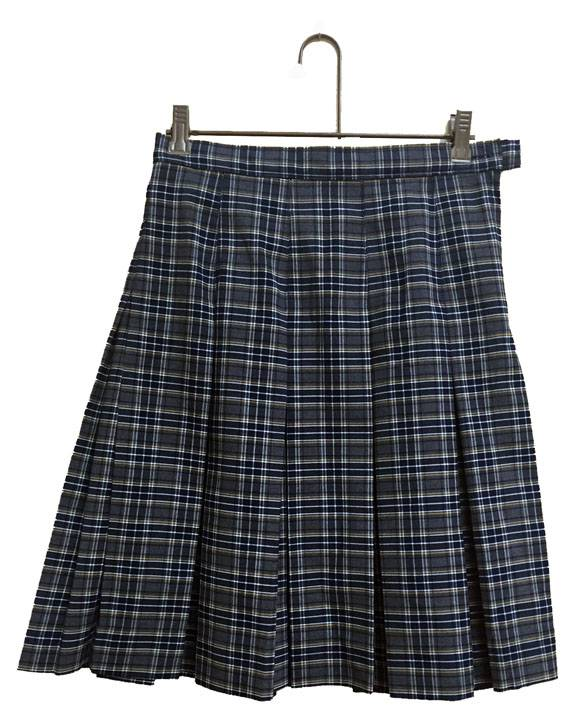 Notre Dame Poly Plaid Skirt notre dame high school, pius 5th high school, pius v high school, pius x high school, pius festus, PLAID KICK PLEAT SKIRT, PLAID UNIFORM SKIRT, PLAID SKIRT, GIRLS PLAID SKIRT, SCHOOL UNIFORM SKIRT