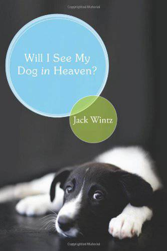 Will I See My Dog In Heaven?  pets, pet, dog, dogs, cat, cats, pet gifts, dog gifts, dogs in heaven, afterlife of dogs