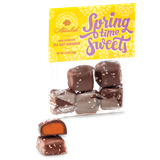Springtime Sea Salt Caramels, Mini Dark Chocolate Covered Caramels Topped with Sea Salt, 1.5 oz.