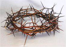 2780 Crown of Thorns Crown of Thorns, Lent, Easter,