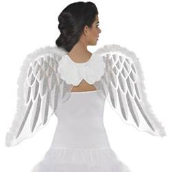 Childrens Angel Wings Nativity Costume