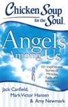 Chicken Soup for the Soul: Angels Among Us 101 Inspirational Stories of Miracles, Faith, and Answered Prayers