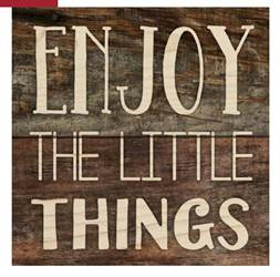 Enjoy the Little Things Magnets