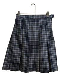Notre Dame Poly Plaid Skirt notre dame high school, pius 5th high school, pius v high school, pius x high school, pius festus, PLAID KICK PLEAT SKIRT, PLAID UNIFORM SKIRT, PLAID SKIRT, GIRLS PLAID SKIRT, SCHOOL UNIFORM SKIRT, ll plaid, dennis ll plaid, dennis ll, ll