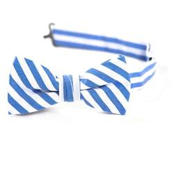 Blue & White Stripe Bow Tie