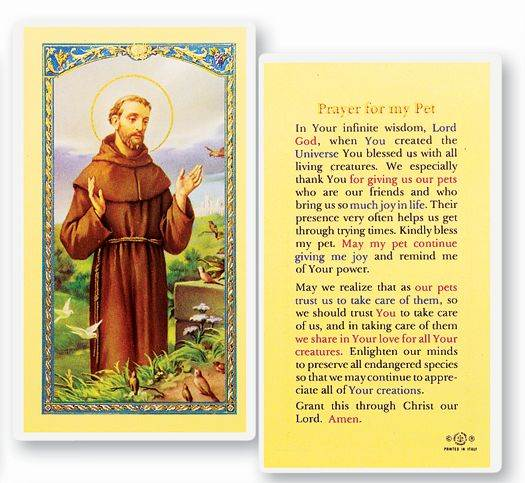 Prayer For My Pet St. Francis Holy Card