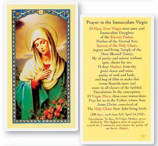 Prayer To Immaculate Virgin Laminated Prayer Card