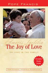 The Joy of Love: On Love in the Family pope francis book, pope francis, pope book