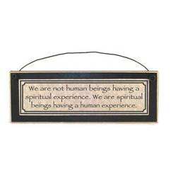 We Are Not Human Beings Having A Spiritual Experience Wall Plaque