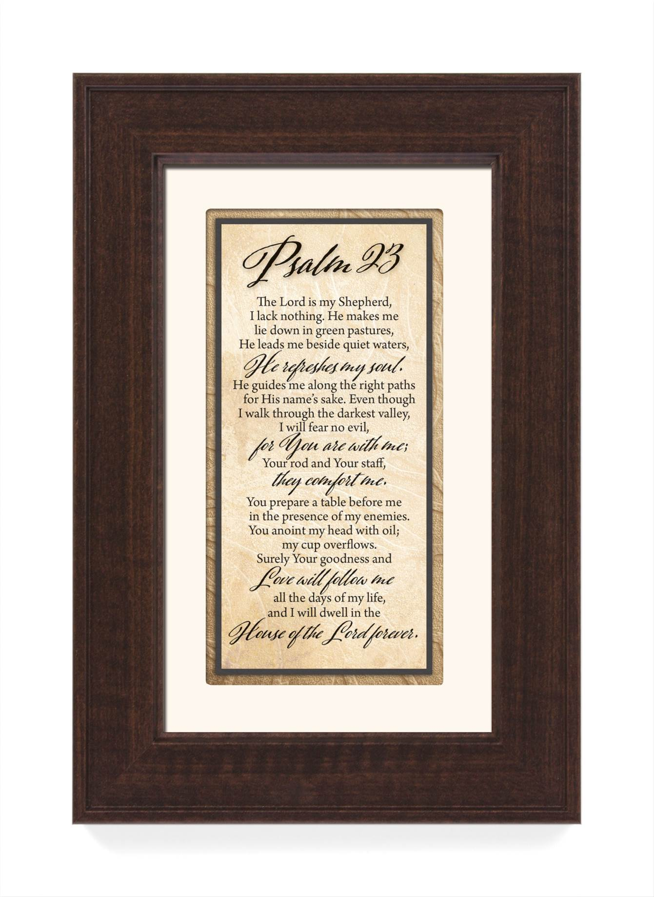Psalm 23 Framed Decor