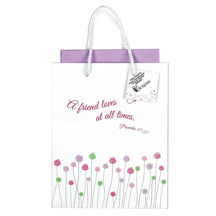 A Friend Loves at All Times Medium Gift Bag