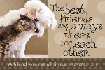 Pass It On-The Best Friends 29152, message cards, holy cards, bookmarks, prayer cards, thougts, card to share, group gifts, inspirational gift, sacramental gifts,