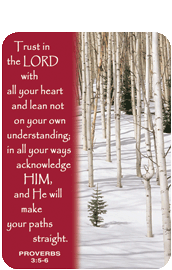 Verse Cards-Trust in the Lord